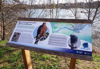 Rutas ornitológicas en Zamora: Practica el 'Urban Birding'