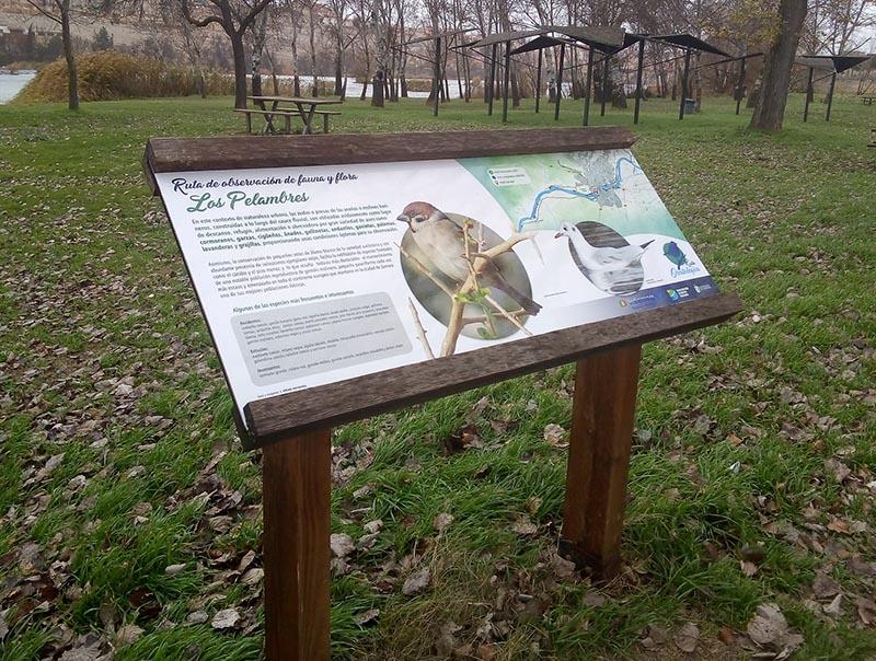 rutas ornitológicas zamora
