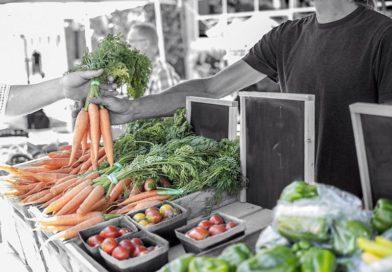 mercado ecológico zamora