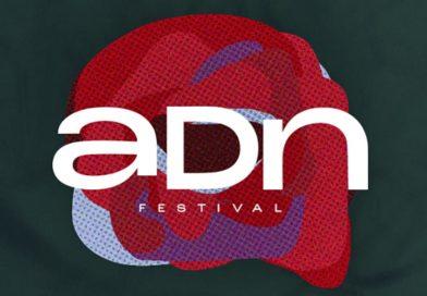 festival adn zamora