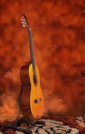 flamenco zamora