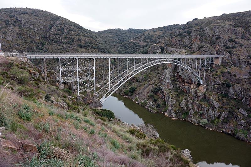 puente de pino