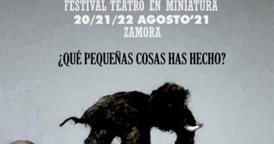Teatro en Miniatura en Zamora