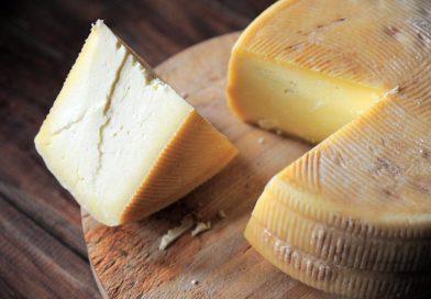 feria mundial del queso zamora